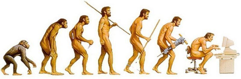 Cum vor arăta oamenii în 1000 de ani?