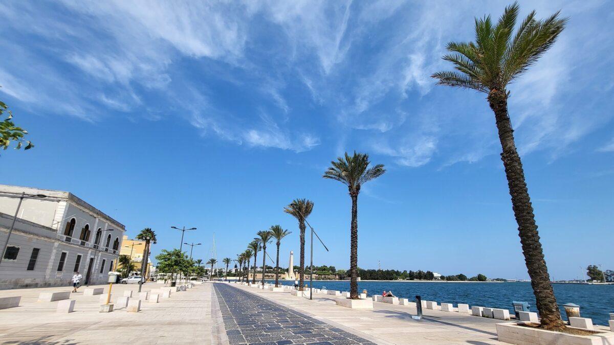 port ziua brindisi palmieri